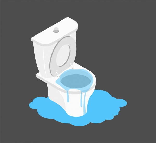 What to Do When the Toilet Overflows