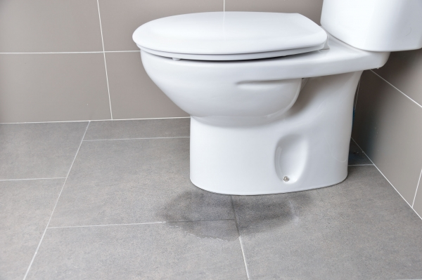 Signs it's Time to Replace Your Toilet
